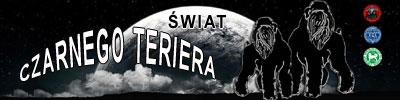baner_swiat_czarnego_teriera